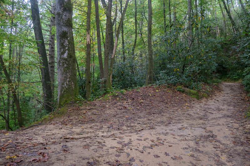 Cat Gap Loop Trail @ Lower Falls Spur -- 2,580'