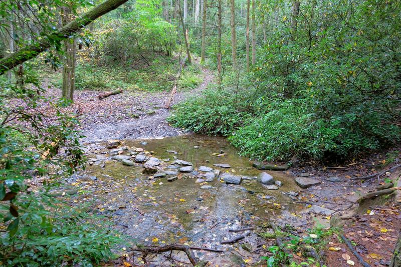 Cat Gap Loop Trail @ Cedar Rock Creek -- 2,630'