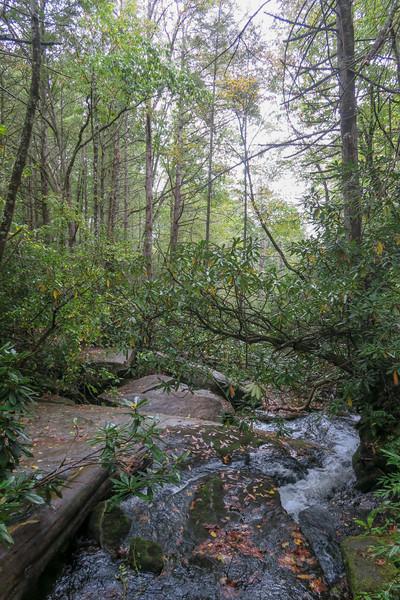 Cedar Rock Creek -- 2,580'