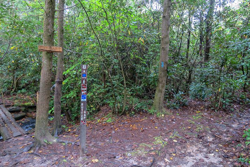 Cat Gap Loop/Butter Gap Trail Junction -- 2,580'