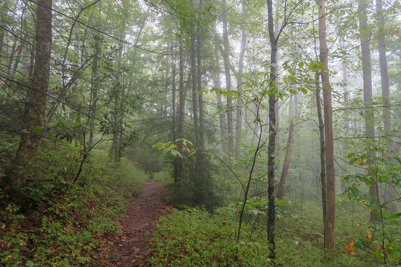Cat Gap Loop Trail -- 3,280'