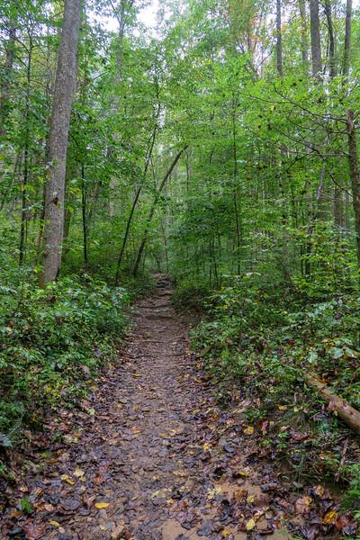 Cat Gap Loop Trail -- 2,520'