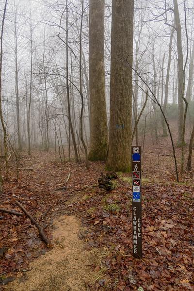 Clawhammer Cove Trail @ F.R. 5058 -- 3,000'