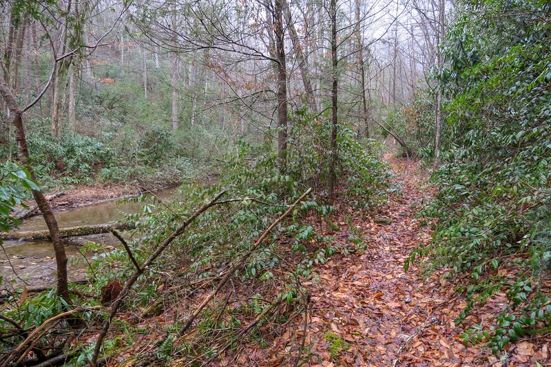 Clawhammer Cove Trail -- 2,470'