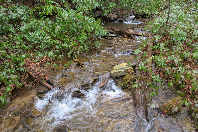 Clawhammer Cove Creek -- 2,740'