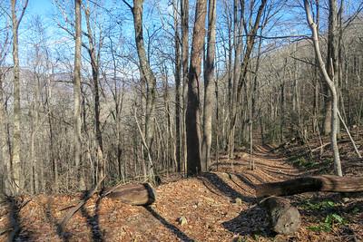 Club Gap Trail -- 3,700'