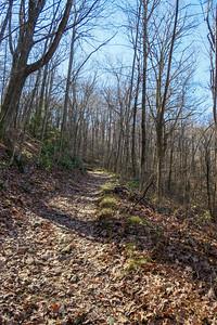 Club Gap Trail -- 3,650'