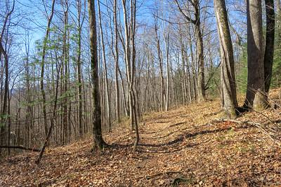 Club Gap Trail -- 3,500'