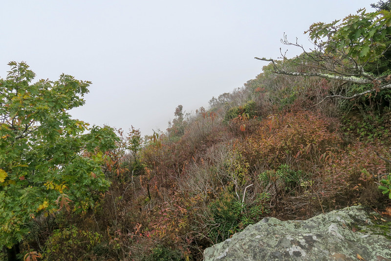 Cold Mountain Trail (Lower Summit Ledges) -- 5,970'