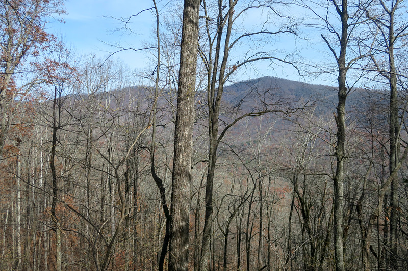 Coontree Loop/Bennett Gap Trail -- 3,050'