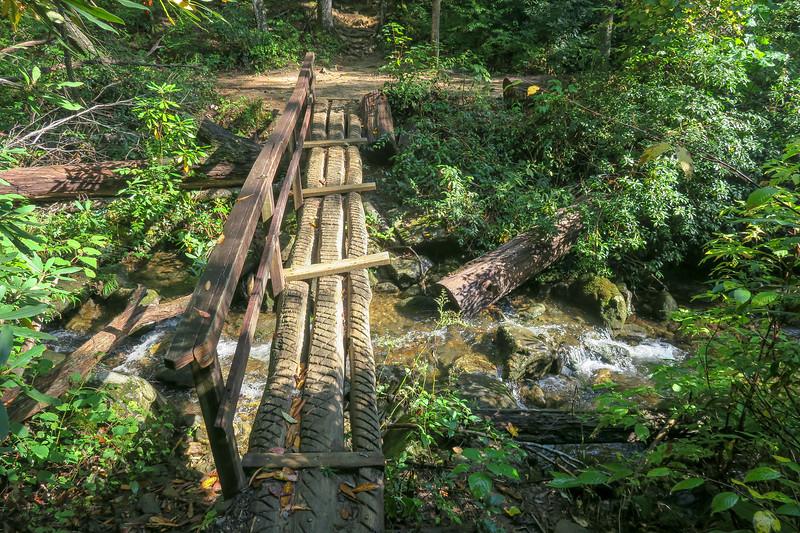 Cove Creek Trail @ Cove Creek -- 3,060'