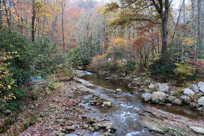 Davidson River -- 2,630'