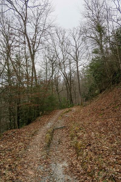 Davidson River Trail -- 2,580'