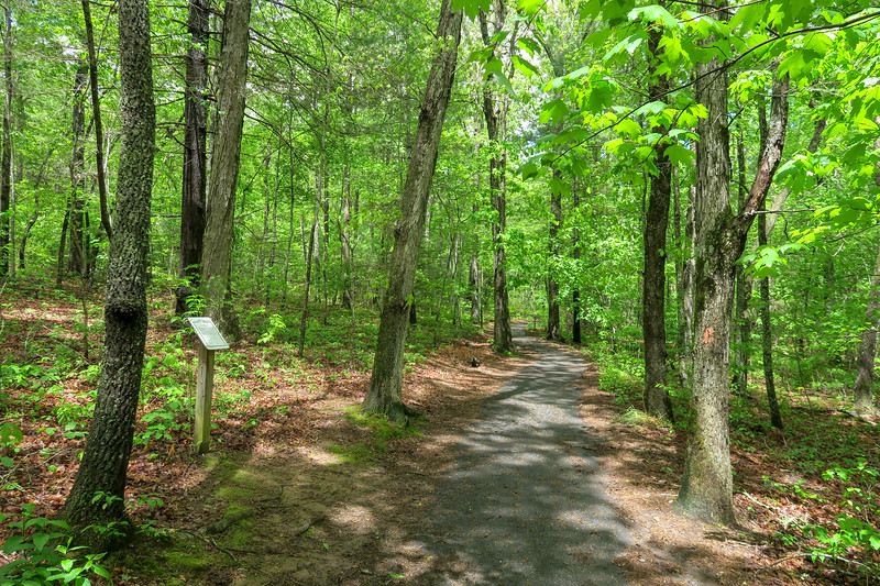 Deer Lake Lodge Trail -- 2,170'