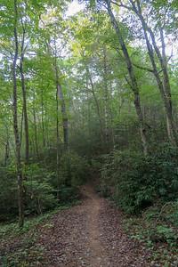 Deerfield Connector Trail -- 2,250'