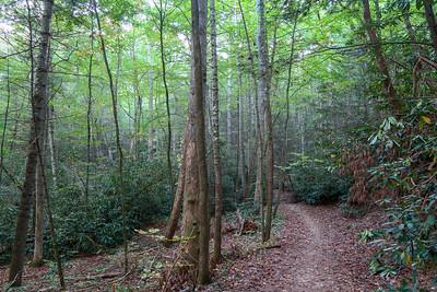 Deerfield Connector Trail -- 2,240'