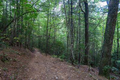 Deerfield Connector Trail -- 2,280'