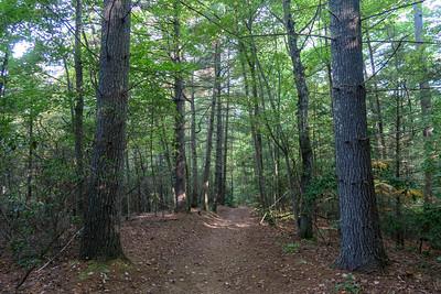 Deerfield Connector Trail -- 2,340'