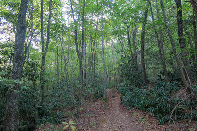 Deerfield Connector Trail -- 2,320'