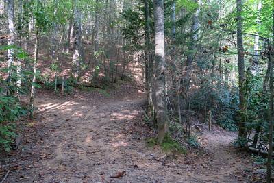 Deerfield Connector/Deerfield Loop Trail Junction -- 2,240'