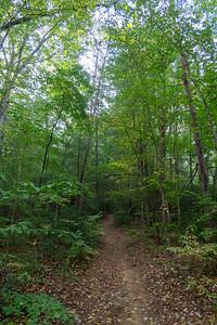 Deerfield Connector Trail -- 2,300'