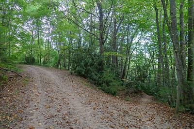 Deerfield Connector Trail @ F.R. 479M -- 2,360'