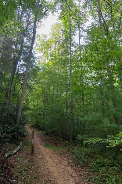 Deerfield Loop Trail -- 2,220'