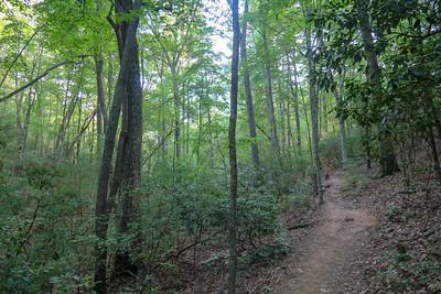 Deerfield Loop Trail -- 2,340'