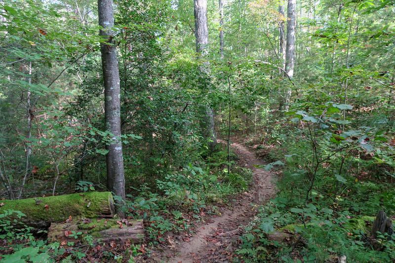 Deerfield Loop Trail -- 2,200'