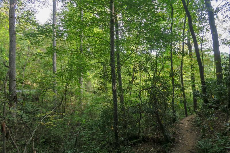 Deerfield Loop Trail -- 2,170'