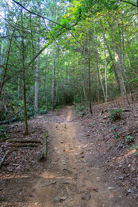 Deerfield Loop Trail -- 2,280'