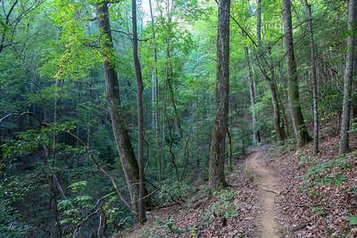 Deerfield Loop Trail -- 2,350'