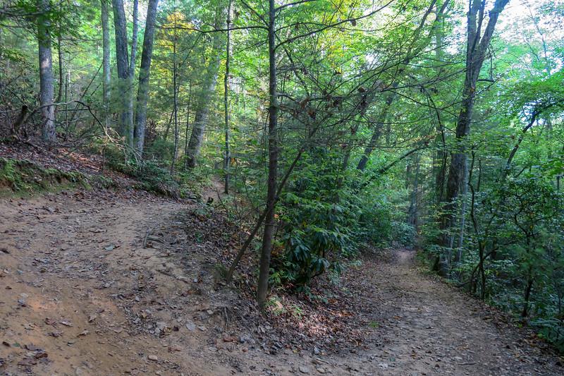 Deerfield Loop Trail -- 2,300'