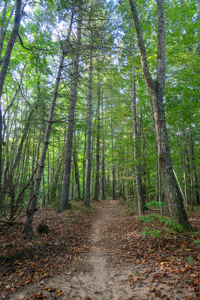 Deerfield Loop Trail -- 2,370'