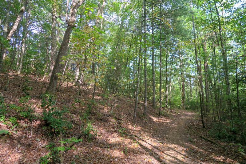 Deerfield Loop Trail -- 2,250'