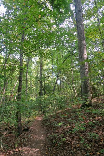 Deerfield Loop Trail -- 2,180'