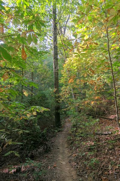 Deerfield Loop Trail -- 2,320'