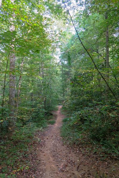 Deerfield Loop Trail -- 2,240'