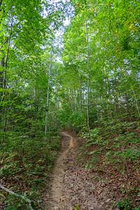 Deerfield Loop/Pine Tree Loop Trail -- 2,280'