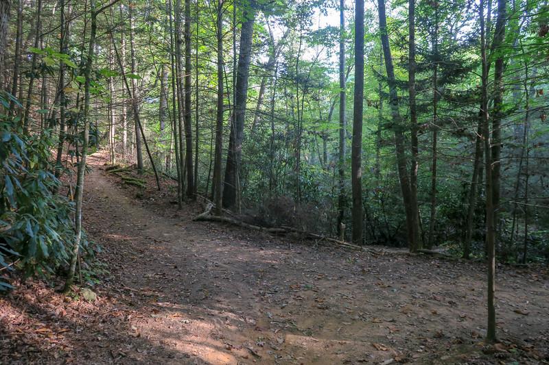 Deerfield Loop/Deerfield Connector Trail Junction -- 2,260'