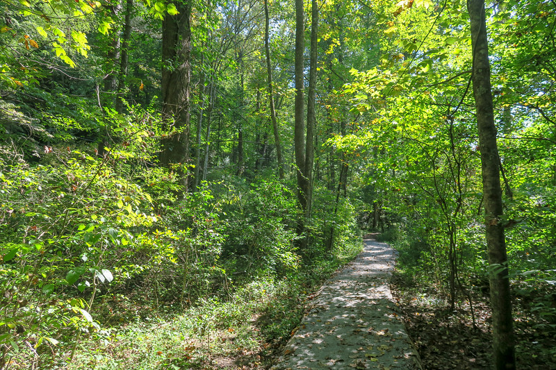 Exercise Loop/Andy Cove Nature Trail