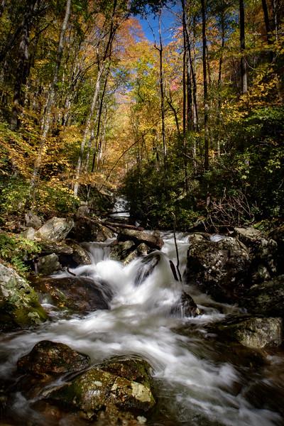 Shuck Ridge Creek -- 3,580'