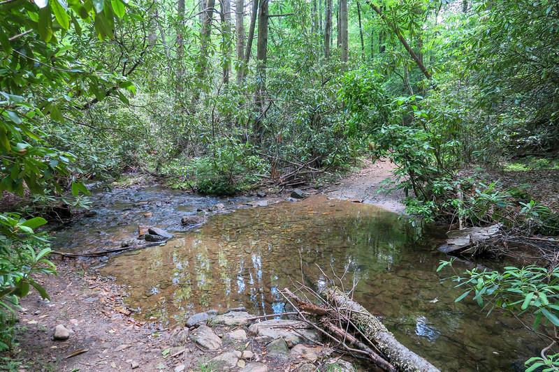 Fletcher Creek Trail -- 2,730'