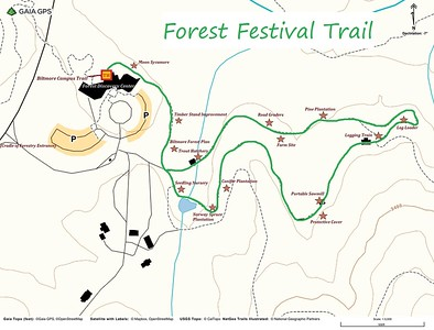 Forest Festival Trail Map