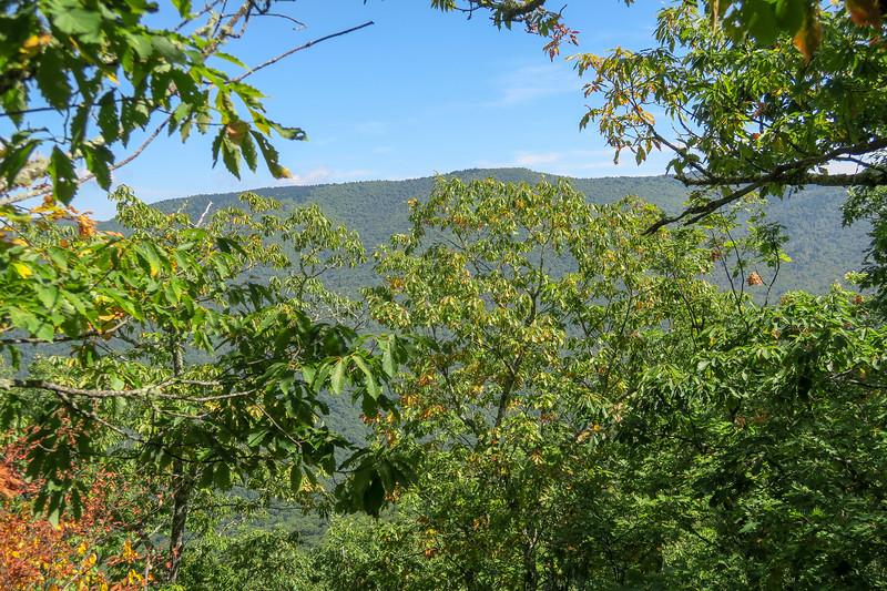 Fork Mountain Trail -- 5,000'