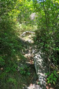 Fork Mountain Trail -- 5,580'