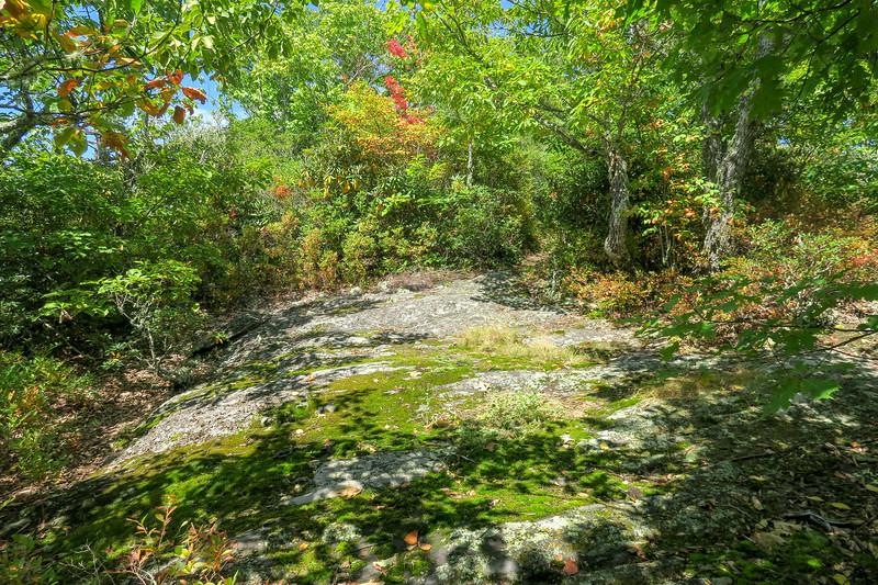 Fork Mountain Trail -- 4,980'