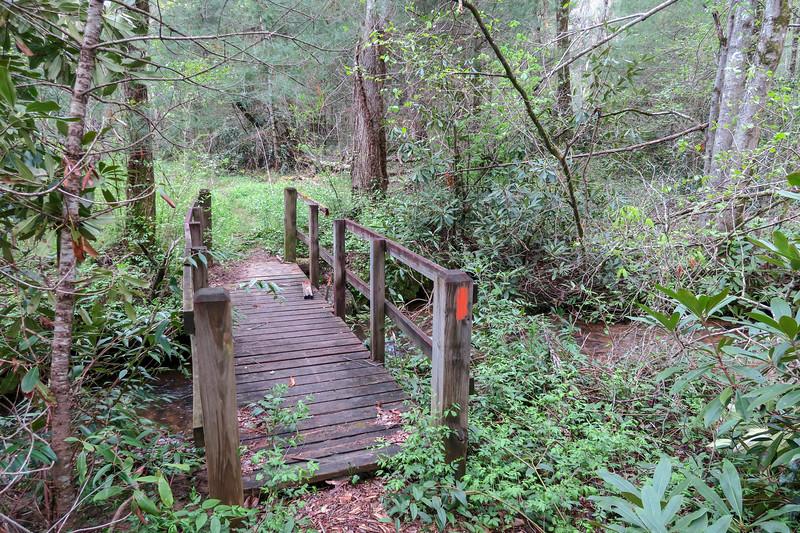 Foster Creek Trail -- 2,220'