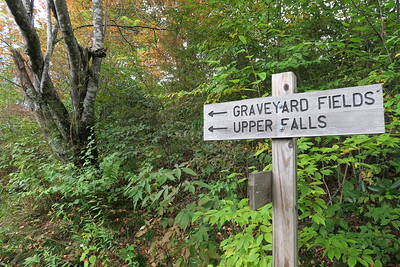 Graveyard Fields Loop/Mountains-to-Sea Access Trail Junction