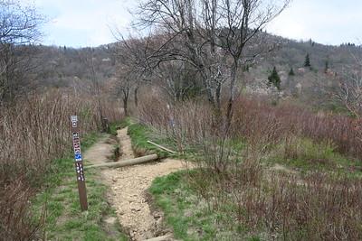 Graveyard Fields Loop/Graveyard Ridge Connector Trail Junction -- 5,050'